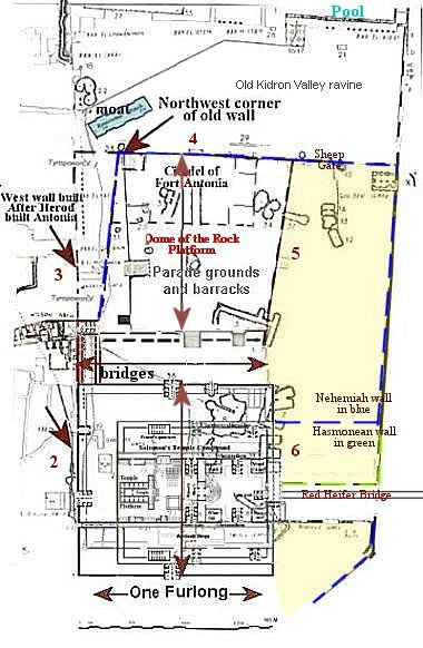Layout of Temple and Fort Antonia -Warren map